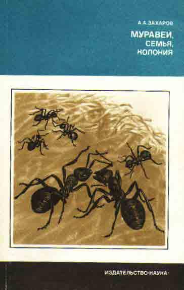 длусский г м букин а п знакомьтесь муравьи скачать